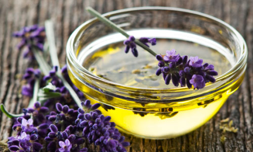 Chú ý làm dịu da tinh dầu hoa oải hương