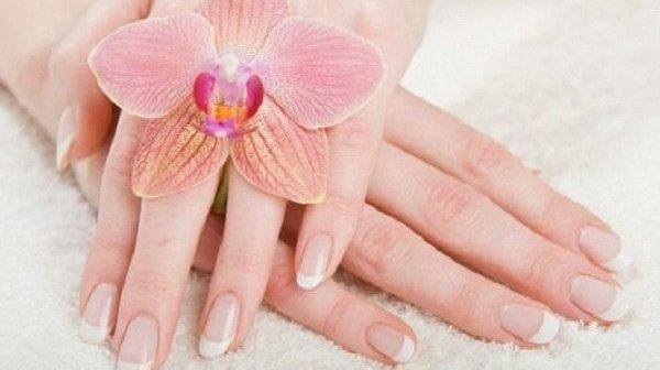 6 cách chăm sóc da tay từ thiên nhiên cực hiệu quả 1