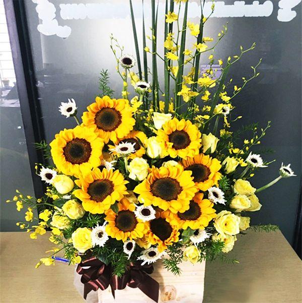 Hoa hướng dương là loài hoa vô cùng ý nghĩa