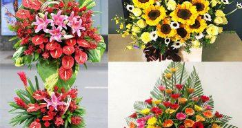Hoa chúc mừng khai trương - Nên chọn hoa gì để mừng khai trương?