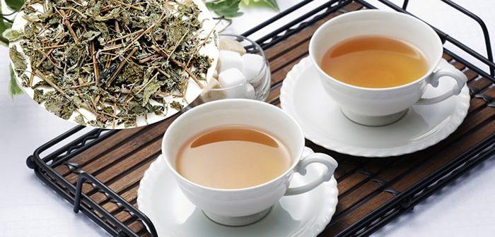 Chuyên gia y tế mách bạn top 5 tác dụng trà linh chi xạ đen
