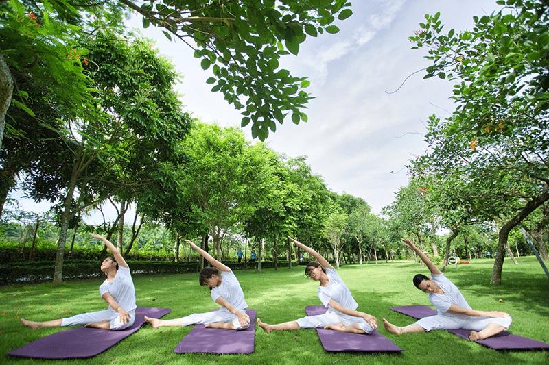 Tập Yoga giữa núi rừng đem lại nhiều lợi ích đến không ngờ