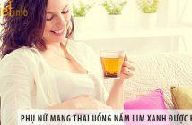 Phụ nữ mang thai có uống nấm lim xanh được không?